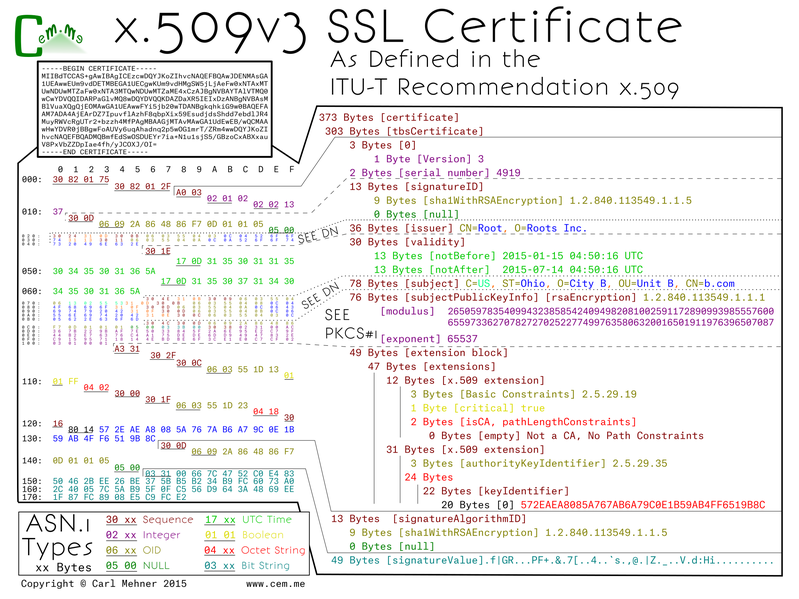 X509 Extensions for Covert Channel Purposes | Fidelis